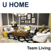 Конструкции софы u мебель комнаты домашней специальной живущий