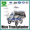 공장 Direct Price Rice Transplanter Transplanting Seedlings Factory Rice Transplanting Machine Riding Type 2z-6b2