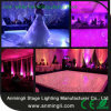 Wedding를 위한 Protable Starlit LED Dance Floor