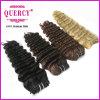 高品質の100%年のRemyの人間の毛髪の深い波薄茶のカラー毛の深い波の毛の拡張