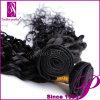 Lot di riserva a Guangzhou Short Curly Human Hair per le donne di colore