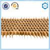 Âme en nid d'abeilles de papier de matériau de construction de Suzhou Beecore