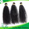 Parrucca riccia crespa non trattata dei capelli del Virgin dei capelli umani