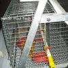 Маленькое оборудование клетки цыпленка