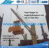drahtloses Fernsteuerungszupacken der Seil-25t zwei auf Marineplattform-Kran