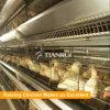 El pollo del marco de H utilizó las jaulas soldadas del acoplamiento de alambre para la ponedora/el pollo de la capa/huevo