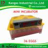 Incubateur complètement automatique d'oeufs de vente chaude mini pour l'incubateur de 36 oeufs à vendre 36 (KP-36)