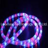 Lumière d'ampoule au néon du câble DEL de la lumière Y3 de corde d'AC230V DEL