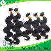 Нарисованные двойником человеческие волосы пачки волос Vrgin бразильянина 100%