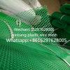 작은 눈 플라스틱 메시, 녹색 플라스틱 편평한 그물, PE 그물
