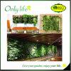 Onlylife 7 소형 Eco-Friendly 다채로운 정원 수직은 부대를 증가한다