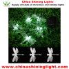 Indicatori luminosi della decorazione di colore di bianco di giardino di festa