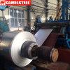 La migliore qualità di prezzi bassi ha galvanizzato le bobine d'acciaio
