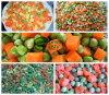 Vegetais misturados/misturados de IQF congelado (4 misturaram, 3 misturados, 2 misturados.)