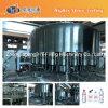 Línea del agua mineral/maquinaria de relleno automáticas de la producción