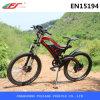 세륨 En15194 E 자전거, 전기 산악 자전거 48V 750W 모터