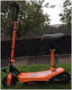 bici piegante Es-300 del motorino elettrico 250W