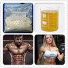 Methenolone Enanthate (CAS: 303-42-4) для прочности мышцы с поставкой безопасности