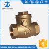 Латунная арматура латунного клапана стандартная, оптовый латунный задерживающий клапан