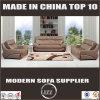 Modernes Sofa gesetztes Lz525b der Qualitäts-2017