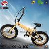 Mini fettes Fahrrad-elektrisches faltbares Fahrrad des Gummireifen-En15194 für Kind