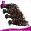 Extensões brasileiras do cabelo humano do cabelo brasileiro do Virgin