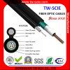 Qualité 12/24 câble aérien de fibre optique d'armure du noyau Gyxtc8s
