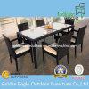Rattan popolare del giardino che pranza insieme, mobilia esterna di modo (FP022)