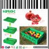 Bakken van het Krat van de Opslag van het Krat van het Krat van het fruit de Plantaardige Plastic