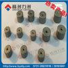 Diverse Bonen van de Matrijzen van de Tekening van het Carbide van de Grootte met Goede Kwaliteit