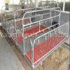 Порося кровать Matemity хавроньи фермы свиньи клети