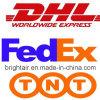 キプロスへのブランドElectronic Products Courier Express From中国