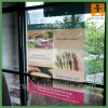 Стикер Customed Removable для Window Decoration