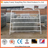 Panneau ovale galvanisé de bétail de tube d'acier du carbone