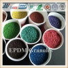 Divers granule des couleurs EPDM pour le plancher d'école et la région de loisirs