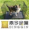 Perrito de la jaula del caso del perro del metal