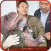 Marioneta del dinosaurio del bebé de la simulación de la exposición 3D del dinosaurio alta