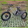 자전거 핸들 통제 스위치 자전거 뚱뚱한 타이어 전기 3개의 바퀴 자전거 또는 전기 화물 Trike