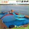 A onda popular do parque da água desliza com habilidade forte do projeto