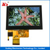 4.3 ``TFT LCD Bildschirm-Bildschirmanzeige für industrielle Anwendungen