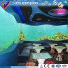 Acrylic Aquarium流行およびSafety
