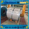 Standard europeu Galvanized Steel Coil com Standard Size