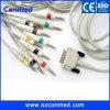 Cable de una sola pieza compatible del electrocardiograma del canal ECG de M3702c 12 para Philip, 10 extremos del plátano 4.0 del IEC de los plomos