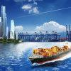 O melhor agente de frete do transporte do oceano de China ao terminal de recipiente dos dois pontos