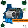 風およびハイドロタービンのための375rpm永久マグネット発電機