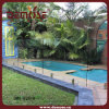 Cerca de la piscina de la seguridad (DMS-B2816)