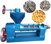 Machine van de Pers van de Olijfolie van de Pinda van de Sesam van het roestvrij staal de Elektrische