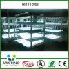 luz de poupança de energia do tubo 8 do diodo emissor de luz 18W de 1200mm