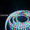 LEIDENE van de flexibele LEIDENE Strepen van Stroken SMD3528 RGB 220V Licht van de Strook