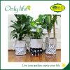 Plantador de interior de Onlylife BSCI/al aire libre respetuoso del medio ambiente popular del jardín de la tela